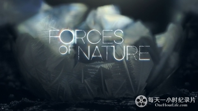 BBC鬼斧神工大自然《自然的力量 Forces of Nature with Brian Cox》